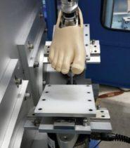 Bio-mechanical Testing